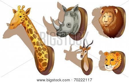 Illustration of the stuffed animal heads on a white background