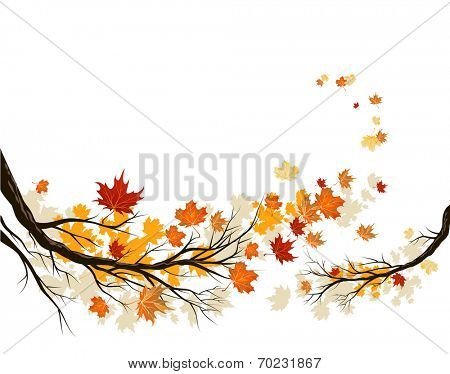 Autumn branches with leaves. Copy space. Raster version.