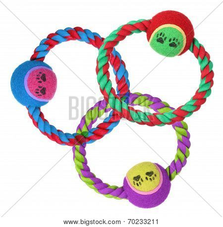 Dog Ring Toys