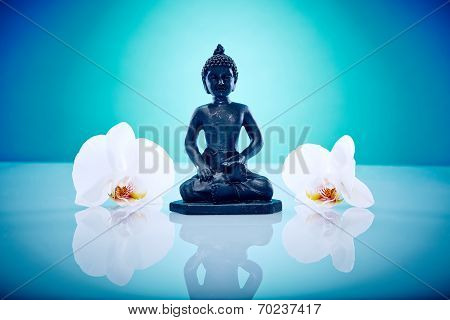Buddah With White Orchis