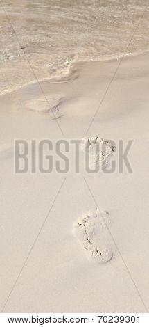 Footprints On  The Beach Walk To Ocean Seashore