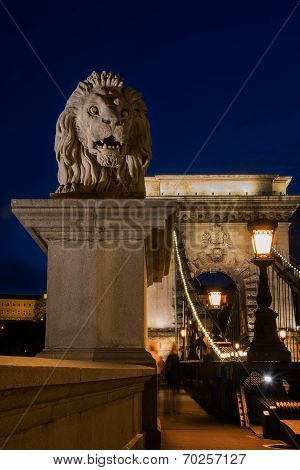 Lion Statue On Chain Bridge Budapest Hungary At Night.