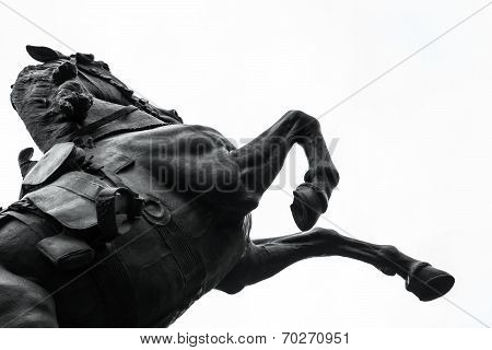 Bronze statue of horse on white background