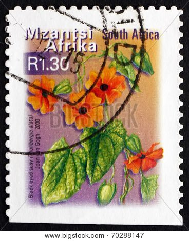 Postage Stamp South Africa 2000 Black Eyed Susy, Flowering Plant