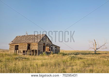 old abandoned homestead on eastern Colorado prairie near Galeton in sunset light