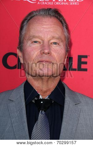 LOS ANGELES - AUG 14:  John Savage at the Crackle Presents the Premieres of