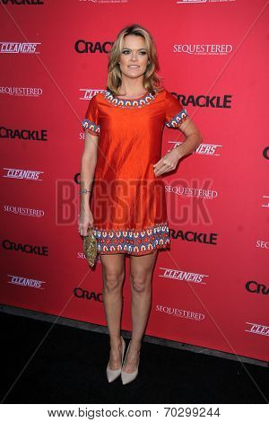 LOS ANGELES - AUG 14:  Missi Pyle at the Crackle Presents the Premieres of