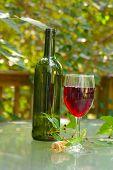 Outdoor Wine poster