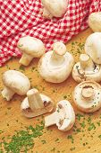 picture of edible mushroom  - Fresh edible Portabello Mushroom Champignon and Fresh Green chopped Parsley on Kitchen Table - JPG