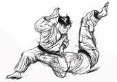 picture of judo  - An hand drawn illustration  - JPG