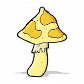 foto of toadstools  - cartoon toadstool - JPG