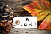 foto of humility  - Autumnal Background with a Label with Be Grateful on it - JPG