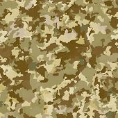 pic of camoflage  - Camouflage military background - JPG