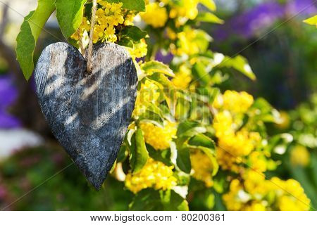 Shiny Golden Chain With A Wooden Heart