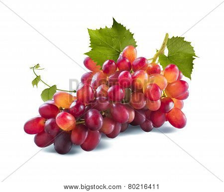 Red Grapes Long Bunch And Leaves Isolated On White Background
