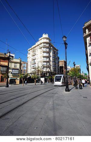 Avenida de la Constitucion, Seville.