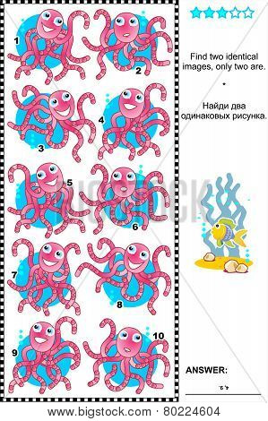 Visual riddle - find identical octopuses