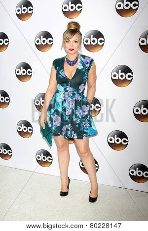 LOS ANGELES - JAN 14:  Amanda Fuller at the ABC TCA Winter 2015 at a The Langham Huntington Hotel on January 14, 2015 in Pasadena, CA
