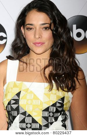 LOS ANGELES - JAN 14:  Natalie Martinez at the ABC TCA Winter 2015 at a The Langham Huntington Hotel on January 14, 2015 in Pasadena, CA