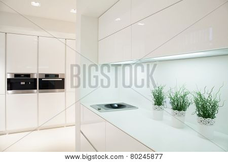 Modern And Expensive Kitchen Interior