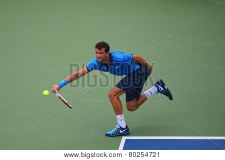 Professional tennis player Grigor Dimitrov from Bulgaria during US Open 2014 round 4 match