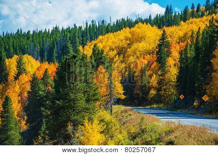 Scenic Fall Colorado Road