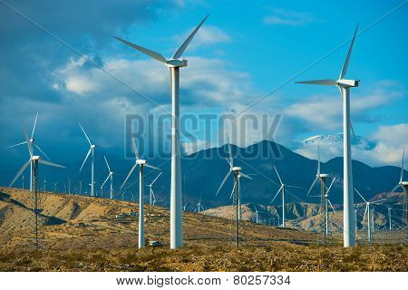 Windy Spot Wind Turbines