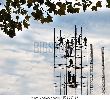 The Scaffold Builders
