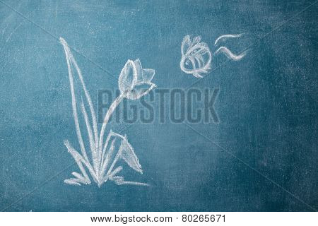 Chalkboard with with drawn flower and a bee
