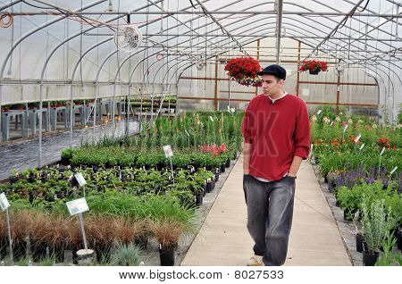 Man Looking At Plants Inside Of Greenhouse Nursery