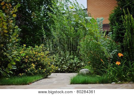 beautiful summer green garden view with stone pathway