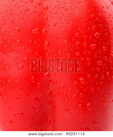 Background Of Wet Red Bell Pepper