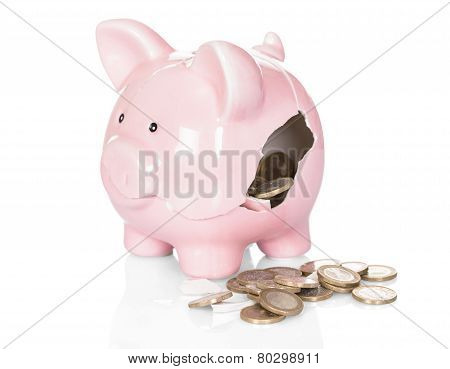 Broken Piggy Bank With Money