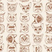 pic of scottish-fold  - Seamless pattern with cats Siamese - JPG