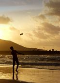 a man throws a disc in the ocean on an beach at sunset poster