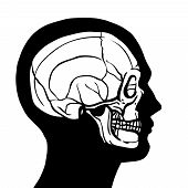 pic of deceased  - Human head profile contour with skull inside anatomy concept vector illustration - JPG