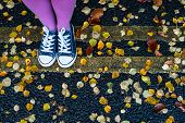 foto of street-walker  - woman standing on the autumn leaves street - JPG