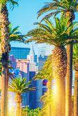 image of las vegas casino  - Las Vegas Strip Scenery - JPG