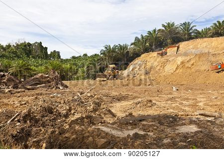 Deforestation in a tropical rainforest