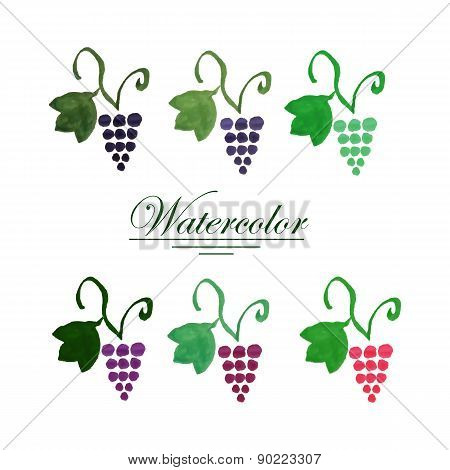 Set of six watercolor grape bunches