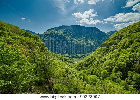 Mountain Landscape On Springtime