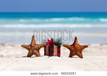 Tropical Celebration On Beach, Two Starfishes And Present Box