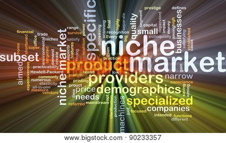 Background concept wordcloud illustration of niche market glowing light