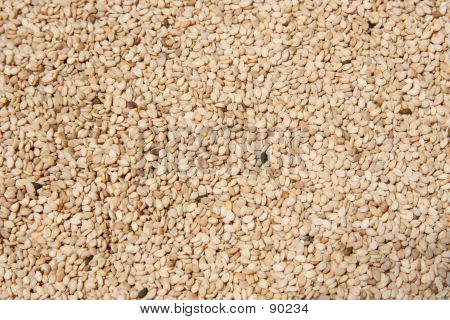 Raw Hulled Sesame Seeds