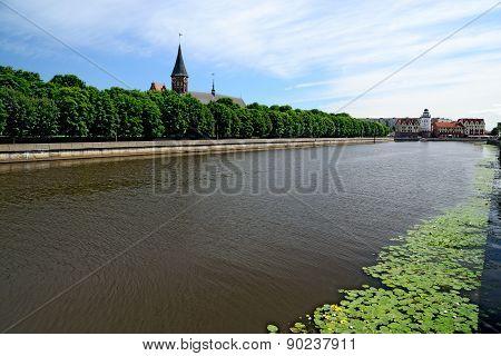 Konigsberg Cathedral. Symbol Of Kaliningrad. Russia