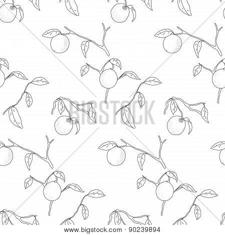 Lemon Tree Pattern