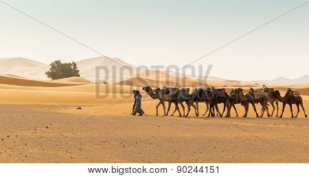 MERZOUGA, MOROCCO, APRIL 13, 2015: Dunes Erg Chebbi - Local men and camels used for tours into the erg