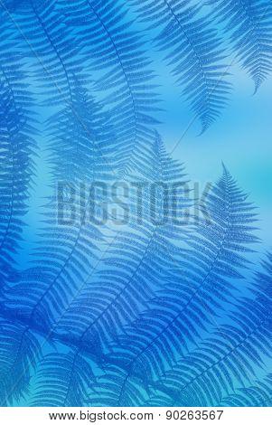 Blue palm leaves
