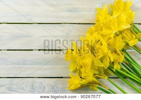 Daffodils Flowers On Wood
