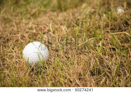 Close Up Dirty Golf Ball